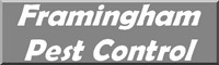 Pest Control Services for the Framingham area - pest control